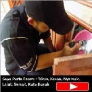 Jasa Anti Rayap di Bekasi