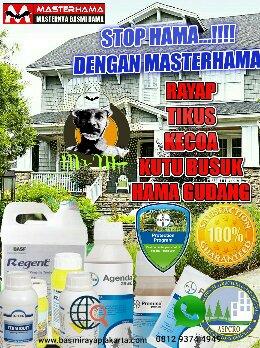 Jasa Anti Rayap Semarang