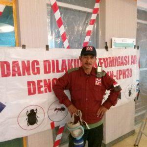 Jasa Anti Rayap Tangerang Selatan