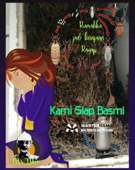 Jasa Anti Rayap di Pakulonan Tangerang Selatan