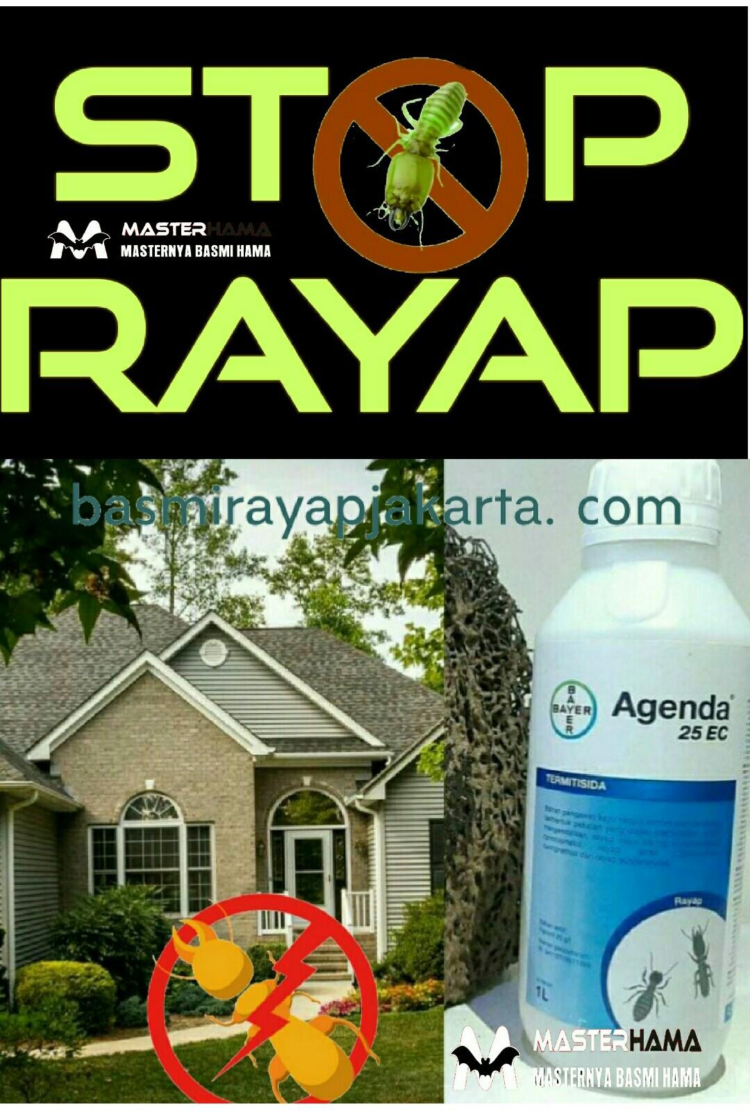 Anti Rayap di Green Mandala Residence Pengasinan Depok