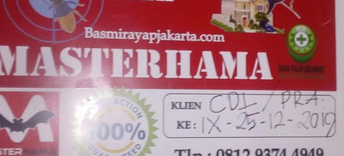 Jasa Anti Rayap Jakarta Barat