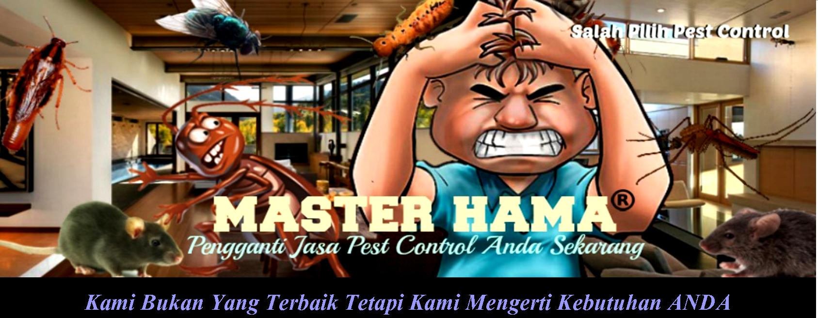 Jasa Anti Rayap Di Jakarta Utara